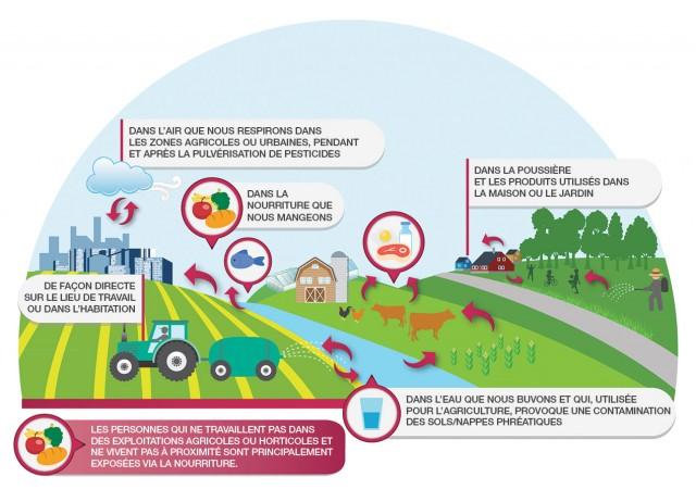 Où se propage les pesticides ?