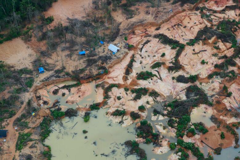 Déforestation au Brésil. © Chico Batata