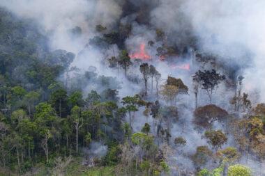 Image de déforestation en Amazonie brésilienne