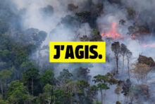 Amazonie : rejoignez la mobilisation !