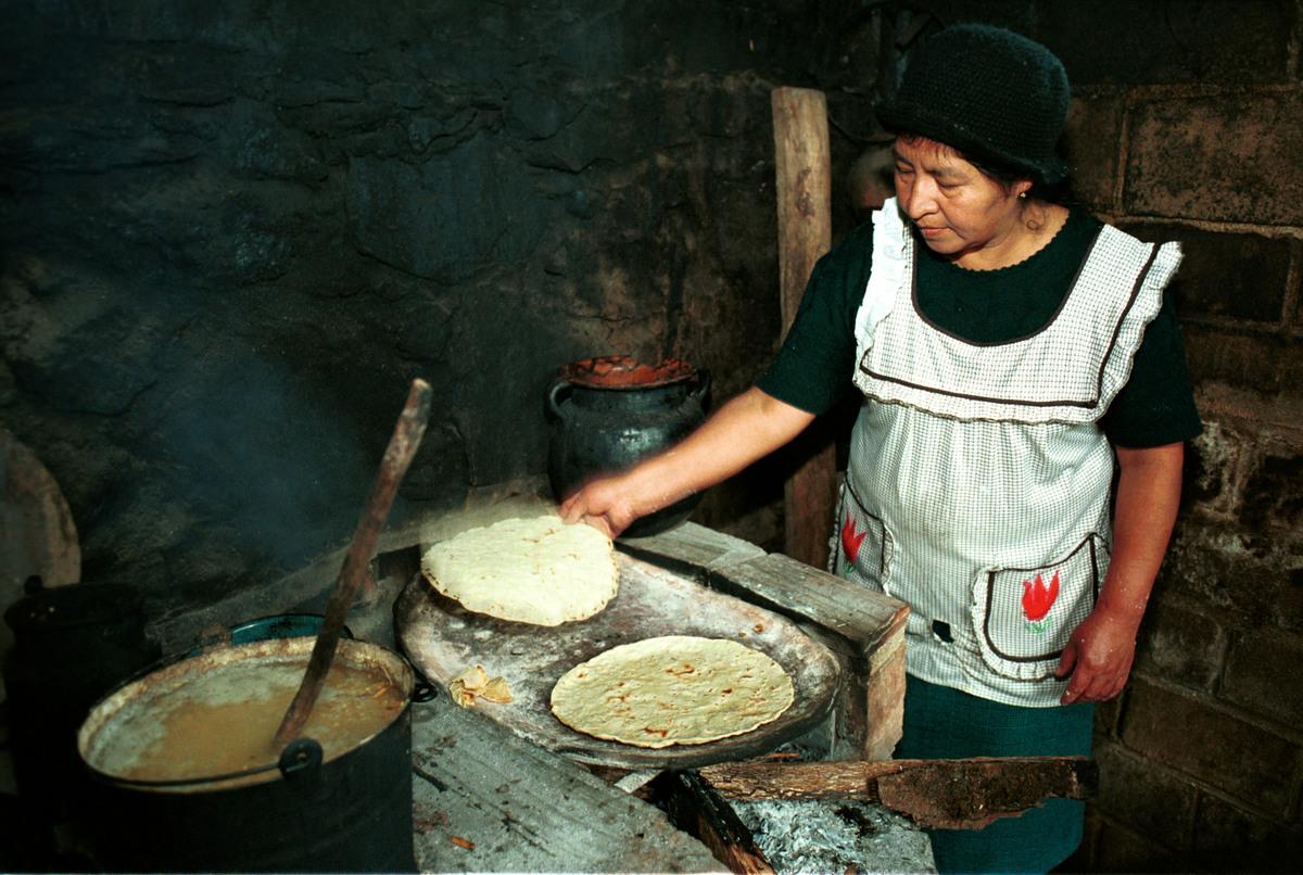 Documentation on GE Maize in Mexico. © Tomas Bravo Garcia