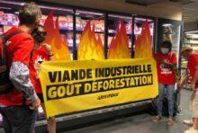 Les militant.e.s de Greenpeace dénoncent l'inaction du gouvernement contre la déforestation importée