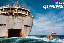 Fêtons les 50 ans de Greenpeace à Wonderland